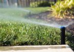 Awesome Water Wise Tips & Tricks for a Perth Summer